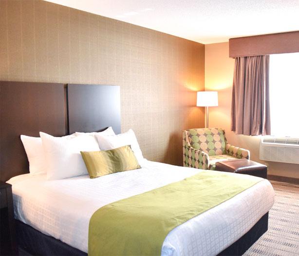 Standard One Queen Room at Best Western Airport Inn Hotel, Warwick